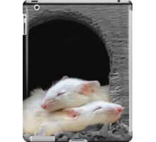 Mouse Huddle iPad Case/Skin