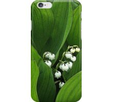 Birth Month Flower - May - Lily of the Valley iPhone Case/Skin