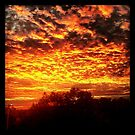 Fall Sunset by Jamie Savatt