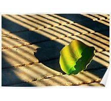 200809181732 Leaf Poster