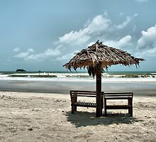 Tropical Beach by geirkristiansen