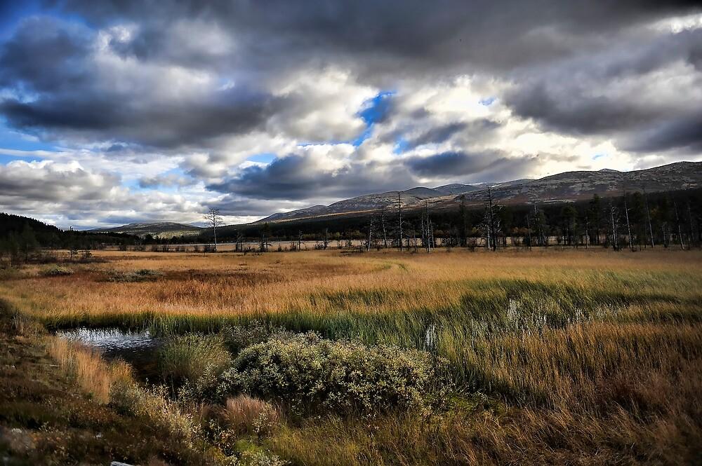 Rondane National Park - Norway by geirkristiansen