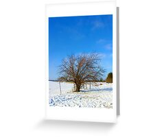 Winter's Kiss Greeting Card