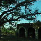 A Tree by Dr. Harmeet Singh