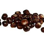Chestnuts by photoshot44