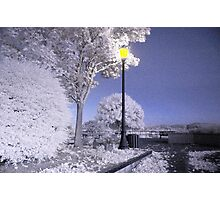 Infrared image of Skinner's Butte park Photographic Print
