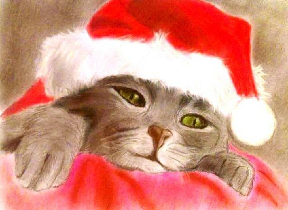 Waiting for Santa by DianeL