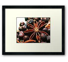 Spices 1 Framed Print