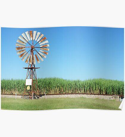 Ayr windmill Poster