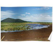 Australian wetlands Poster