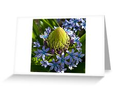 Calendar Cover Picture Greeting Card