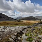 Snowdonia  by Dean Bedding