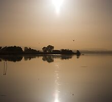 Tranquil evening sundown, Lago Trasimeno, Umbria by Andrew Jones