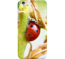 Shy Ladybug iPhone Case/Skin