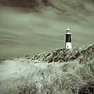 Lighthouse at Spurn Head by Neil Clarke