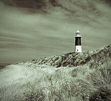 Lighthouse at Spurn Head - 514 views on 08/12/13 by Neil Clarke