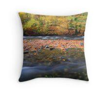 Autumn in motion Throw Pillow