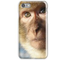 Gibraltar Rock Ape - Barbary Macaque iPhone case iPhone Case/Skin