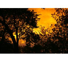 Sunset with Tree Silhouettes Photographic Print