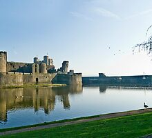 Caerphilly Castle by hazel16