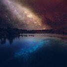 wish by Steven  Sandner