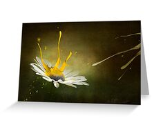 Painting Daisy Greeting Card