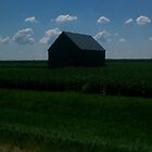 Midwest Barn by Derek Little