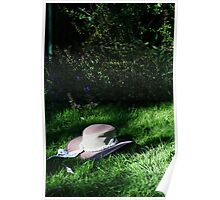 Hat in the Grass Poster