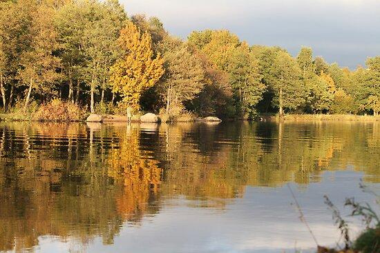 Autumn by mrivserg