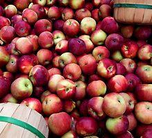Apple Season in New York. by briceNYC