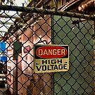 High Voltage by Adam Northam