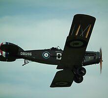Bristol F2b by Andy Jordan