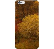 Border - Land - A View  iPhone Case/Skin