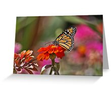 Monarch On The Throne Greeting Card