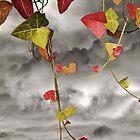 Colour Me Autumn by Christine Lake