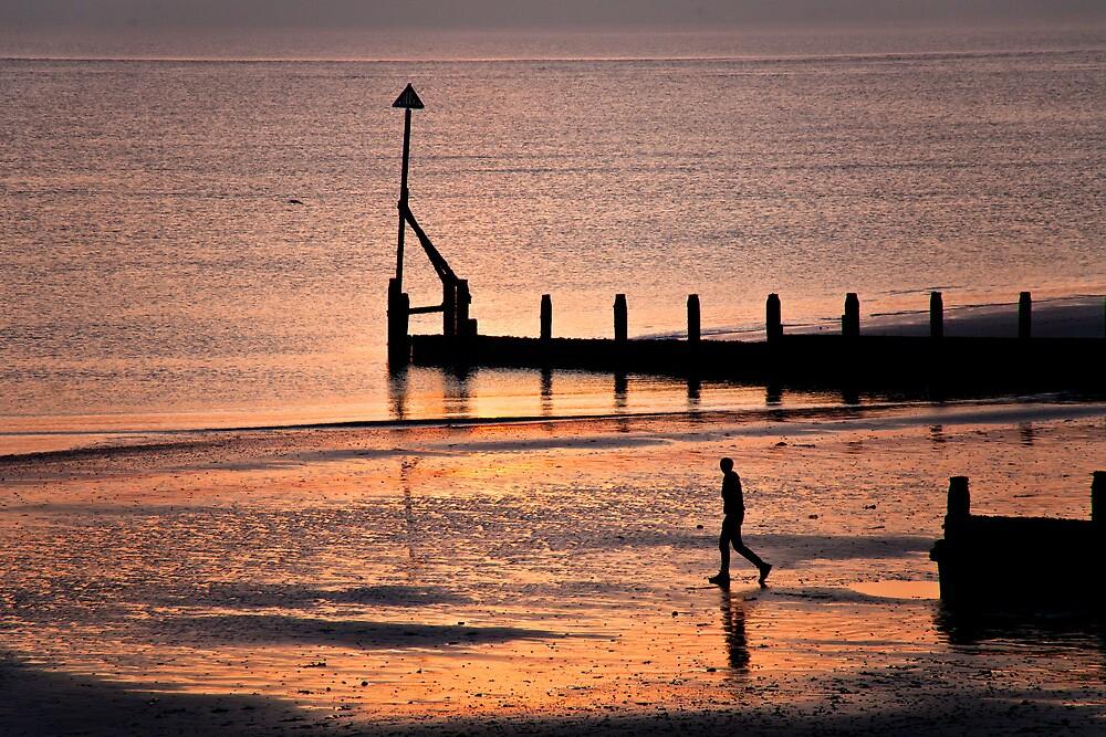 Evening Light by Ellesscee