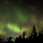 Aurora Borealis Over Eastern Ontario by Bill McMullen