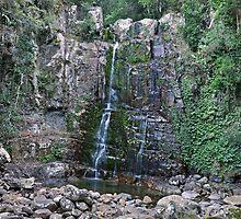 Minnamurra Falls by auswegoimages