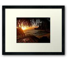 Leafy Sunset Framed Print