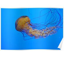 Giant Jelly Poster