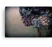 Hydrangea in the Fall Canvas Print