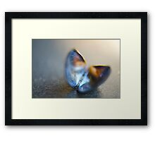 Sealevel Monarch Framed Print