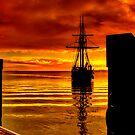 """Homeward Bound"" by Phil Thomson IPA"