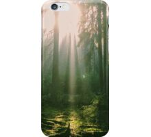 Sunlight in the forest iPhone Case/Skin