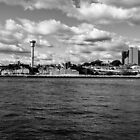 Sydney Harbour  by alidavisphoto