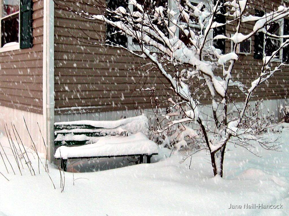 Bench Covered In Snow by Jane Neill-Hancock