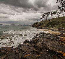 Surf by alidavisphoto