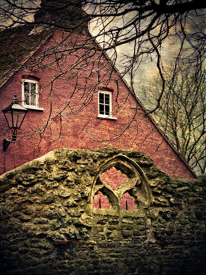Through the Arched Window by Jay Taylor