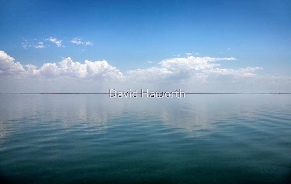 The Truman Show by David Haworth