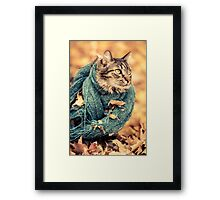 Maine Coon Cat in a Scarf Framed Print
